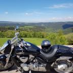 Schelli's Trude im Thüringer Wald