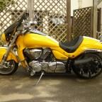 Eine dicke Gelbe